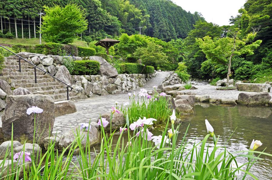滝ノ口河川公園